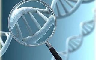 В россии разрабатывается прибор, с помощью которого можно будет расшифровать геном