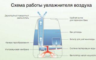 Схема устройства и принцип работы электрочайника