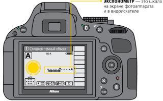 Как выбрать зеркальный фотоаппарат для начинающего фотографа: важные характеристики