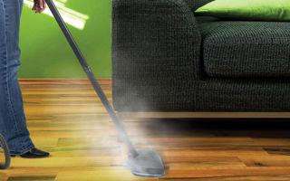 Паровой пылесос: преимущества, как выбрать, популярные модели