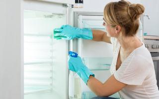 Средство от запаха в холодильнике: чистка и мытье внутри