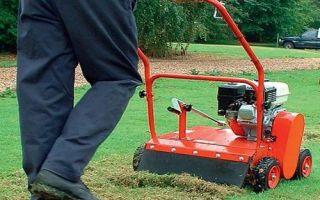 Что такое аэратор для газона, для чего он нужен, разновидности: варикуттер, скарификатор