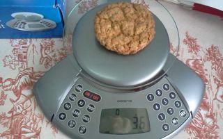 Какие кухонные весы с подсчетом калорий лучше?