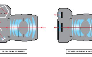 В чем отличие между зеркальным, беззеркальным и компактным цифровыми фотоаппаратами