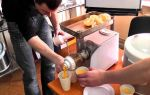 Мясорубка-соковыжималка: преимущества устройства 2 в 1, разновидности, как выбрать