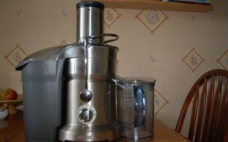 Блендер-соковыжималка: разбор каждого прибора, модель 2 в 1