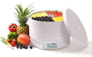 Как выбрать электрическую сушилку-дегидратор для овощей и фруктов, ягод, рыбы