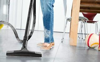 Моющий пылесос или пароочиститель: что лучше, какие недостатки имеют