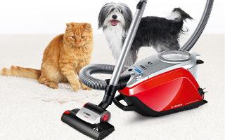 Какой пылесос лучше для уборки шерсти животных?