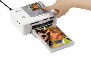 Рейтинг лучших принтеров для печати фотографий: профессиональные, домашние, мини-устройства