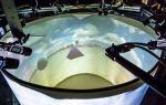 Создана система виртуальной реальности для животных