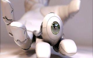 Робот-пылесос cleverpanda i5: новинка 2017 года с hd-камерой, wi-fi и интеллектуальными возможностями