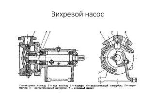 Выбор и эксплуатация ударопрочной и водонепроницаемой экшн-камеры для дайвинга и подводной охоты