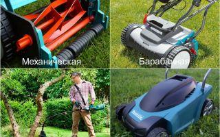 Выбор газонокосилки для дачи: электрическая, бензиновая или механическая