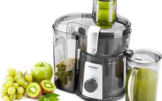 Соковыжималки для овощей и фруктов: виды, параметры
