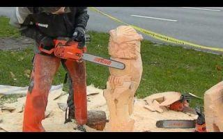 Работа бензопилой: правила валки леса, распила бревен, резьба поделок из дерева